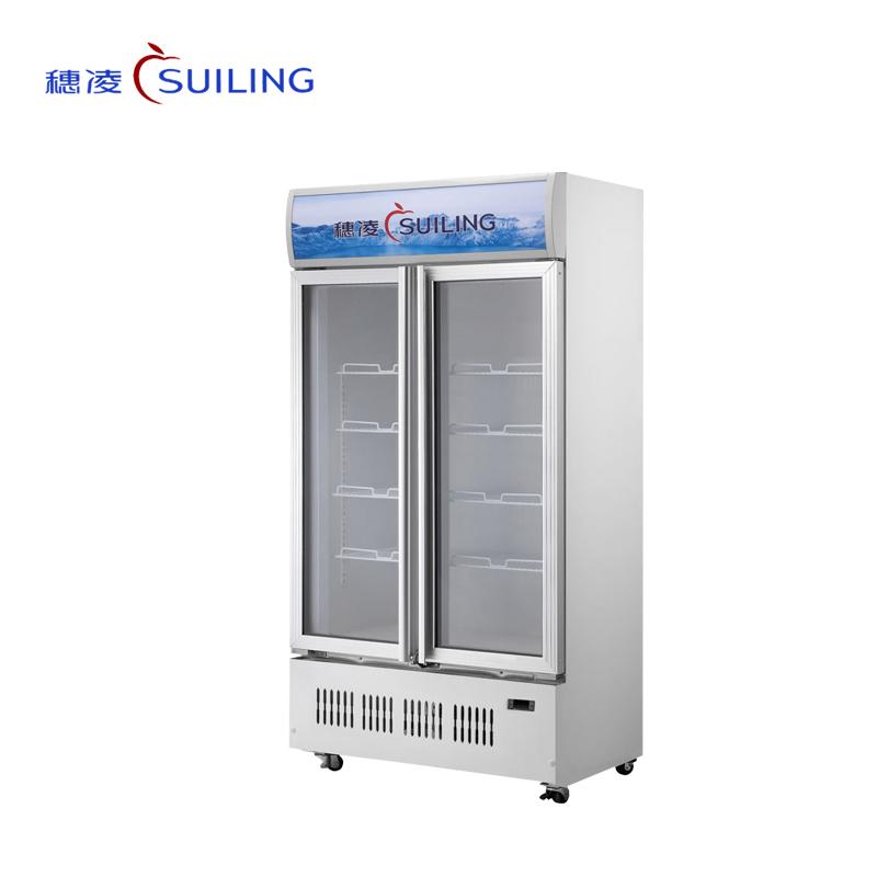穗凌 LG4-700M2W/900M2W/1100M3W/1300M3W 商用冰柜冷藏展示双门茶叶冷柜立式风冷阴凉柜(LG4-900M2/W)